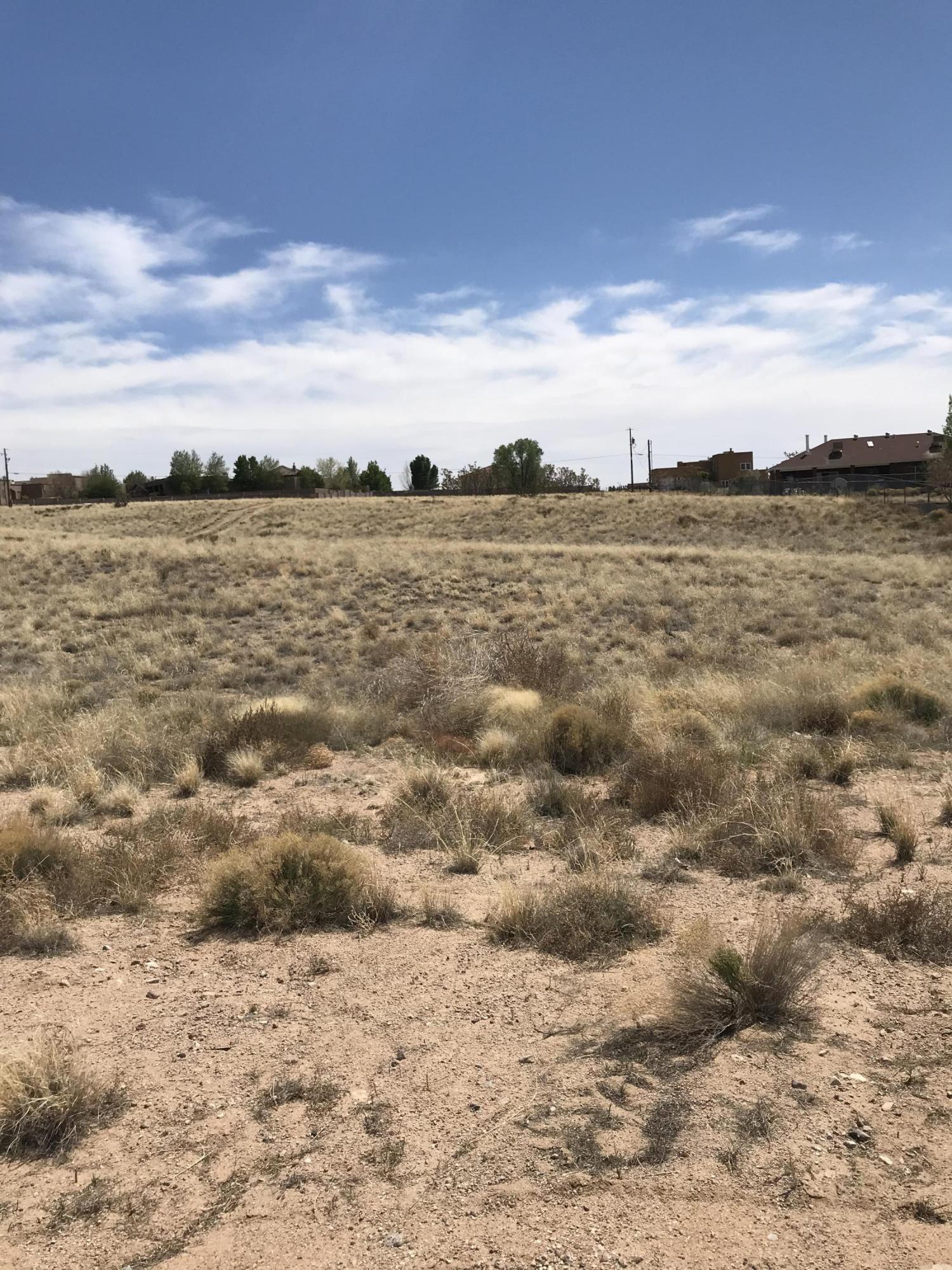 Palomas Avenue NE Property Photo - Albuquerque, NM real estate listing