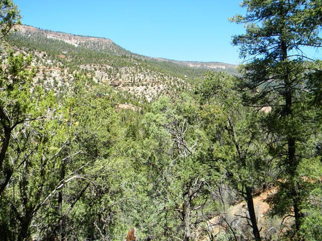 River Drive Property Photo - Jemez Springs, NM real estate listing