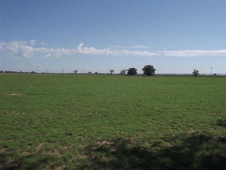 Felice Farms Real Estate Listings Main Image