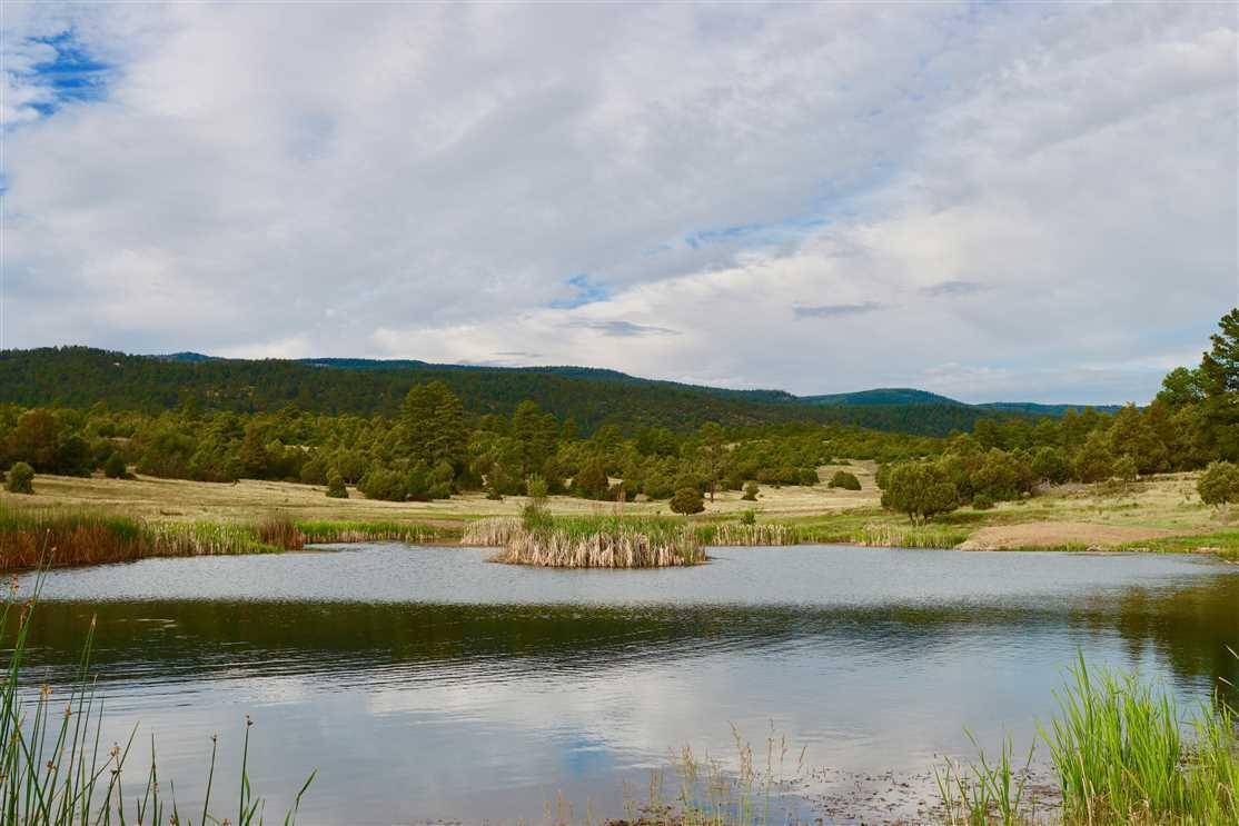 Milligan Ranch Property Photo - Chama, NM real estate listing