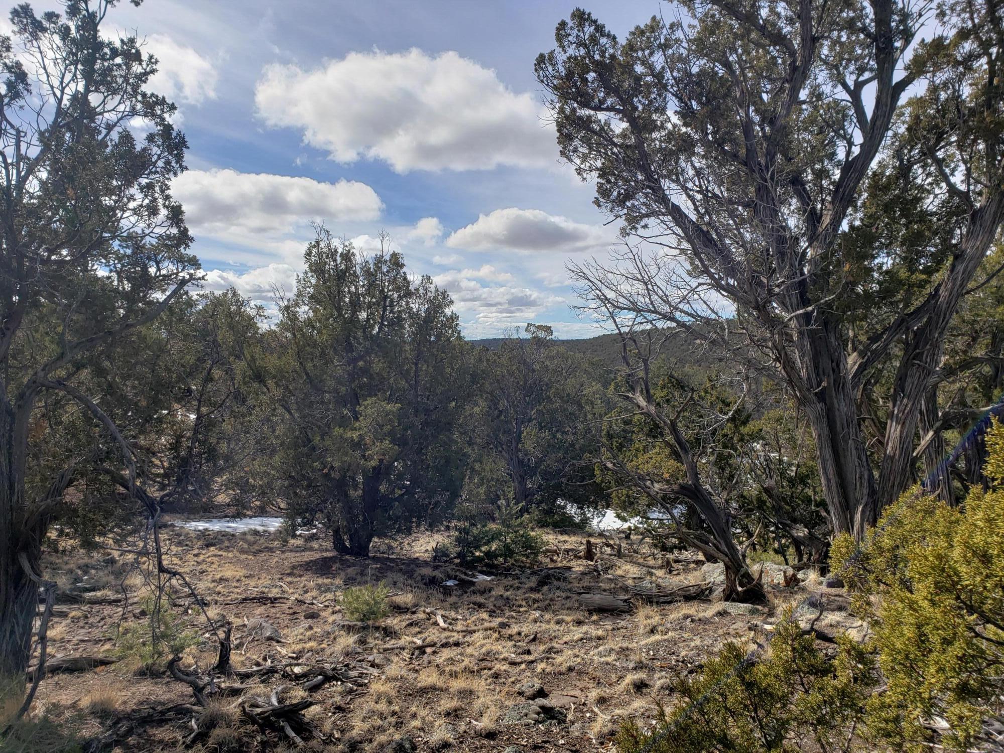 Lot 89 Starfire Drive Property Photo - Quemado, NM real estate listing