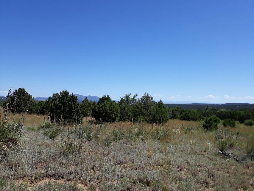 Frost Road Property Photo - Sandia Park, NM real estate listing