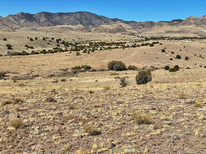12 Highland Springs Ranch Property Photo - San Antonio, NM real estate listing