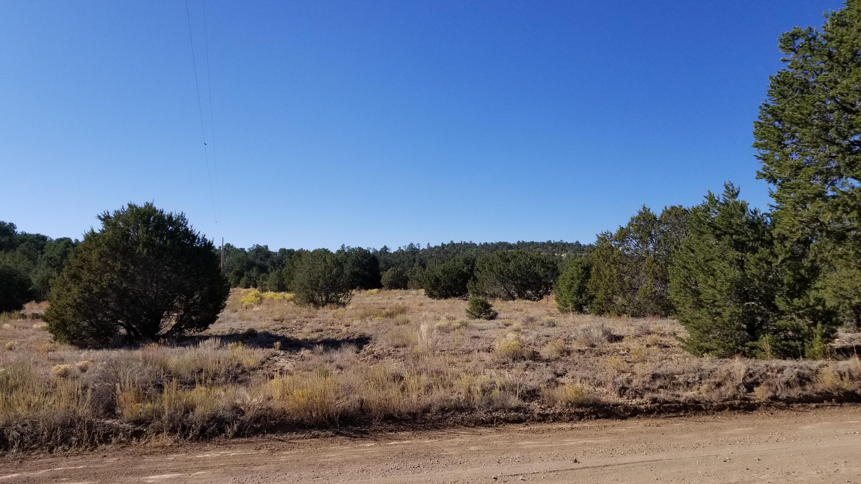 Lot 11 Misty Lane - Candy Kitchen, Property Photo - Ramah, NM real estate listing