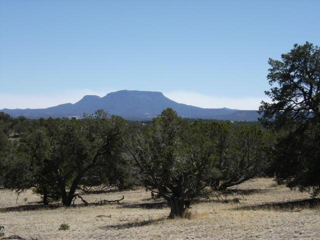 71 Ridgetop Circle Property Photo - Pie Town, NM real estate listing