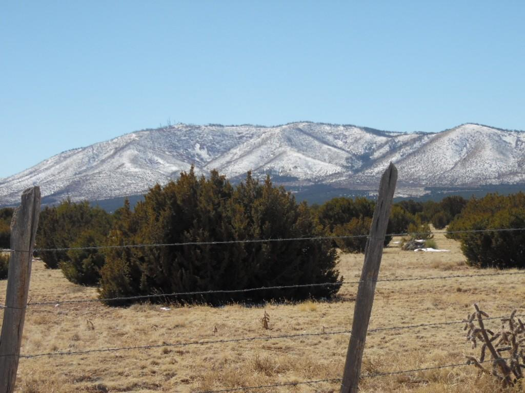 Granquivra Road Property Photo - Willard, NM real estate listing