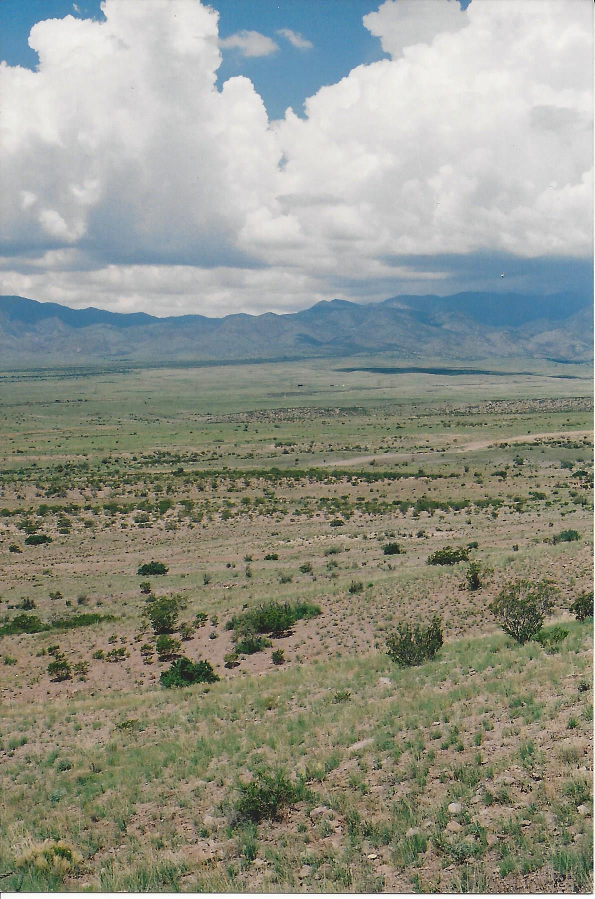 WILLOW SPRINGS RANCH Lot: 35 Property Photo - San Antonio, NM real estate listing