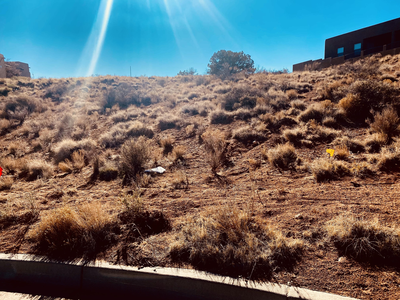 2417 Desert Marigold Road Ne Property Photo