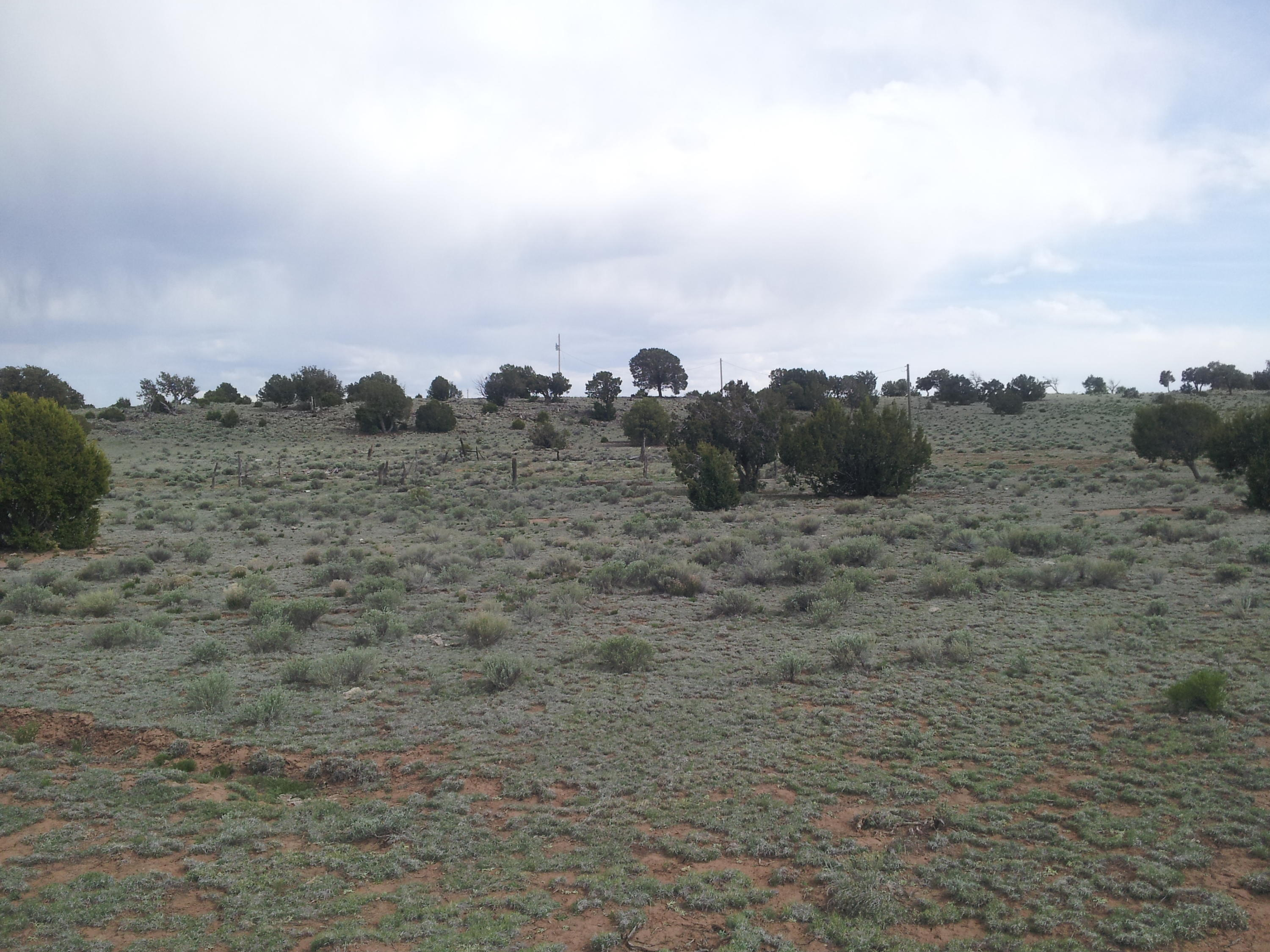 0 Geraldine Way Property Photo - Fence Lake, NM real estate listing