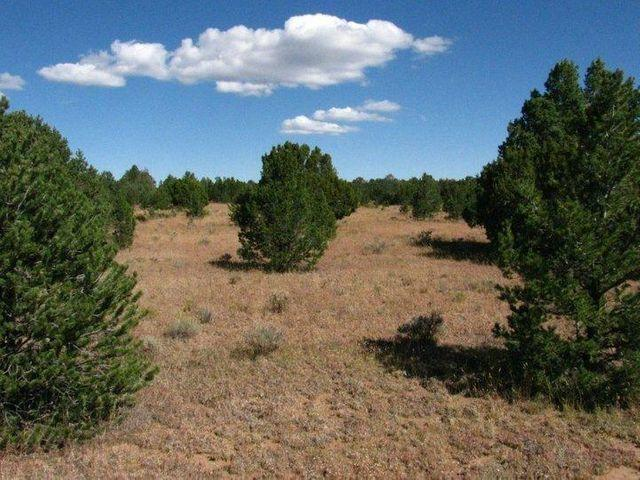 tierra verde lands Property Photo - Grants, NM real estate listing