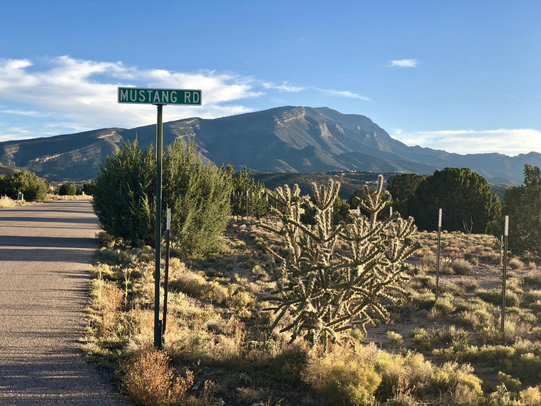 Mustang Mesa Real Estate Listings Main Image