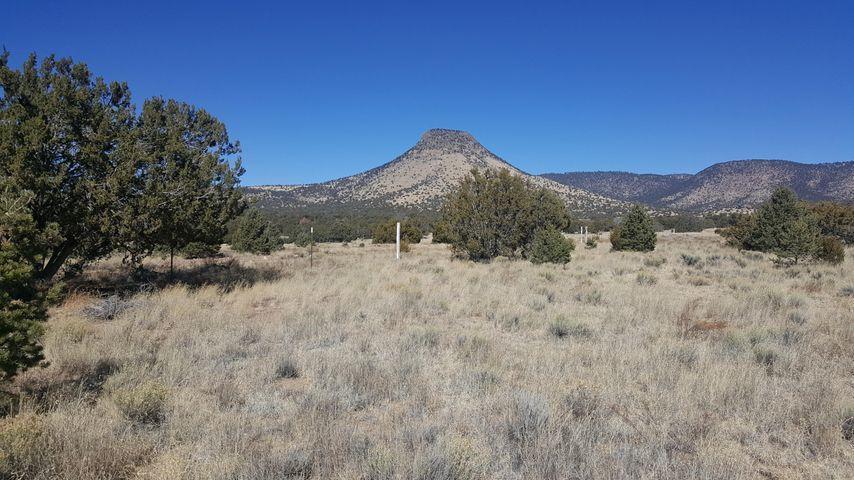 106 & 107 Sugarloaf Property Photo - Datil, NM real estate listing