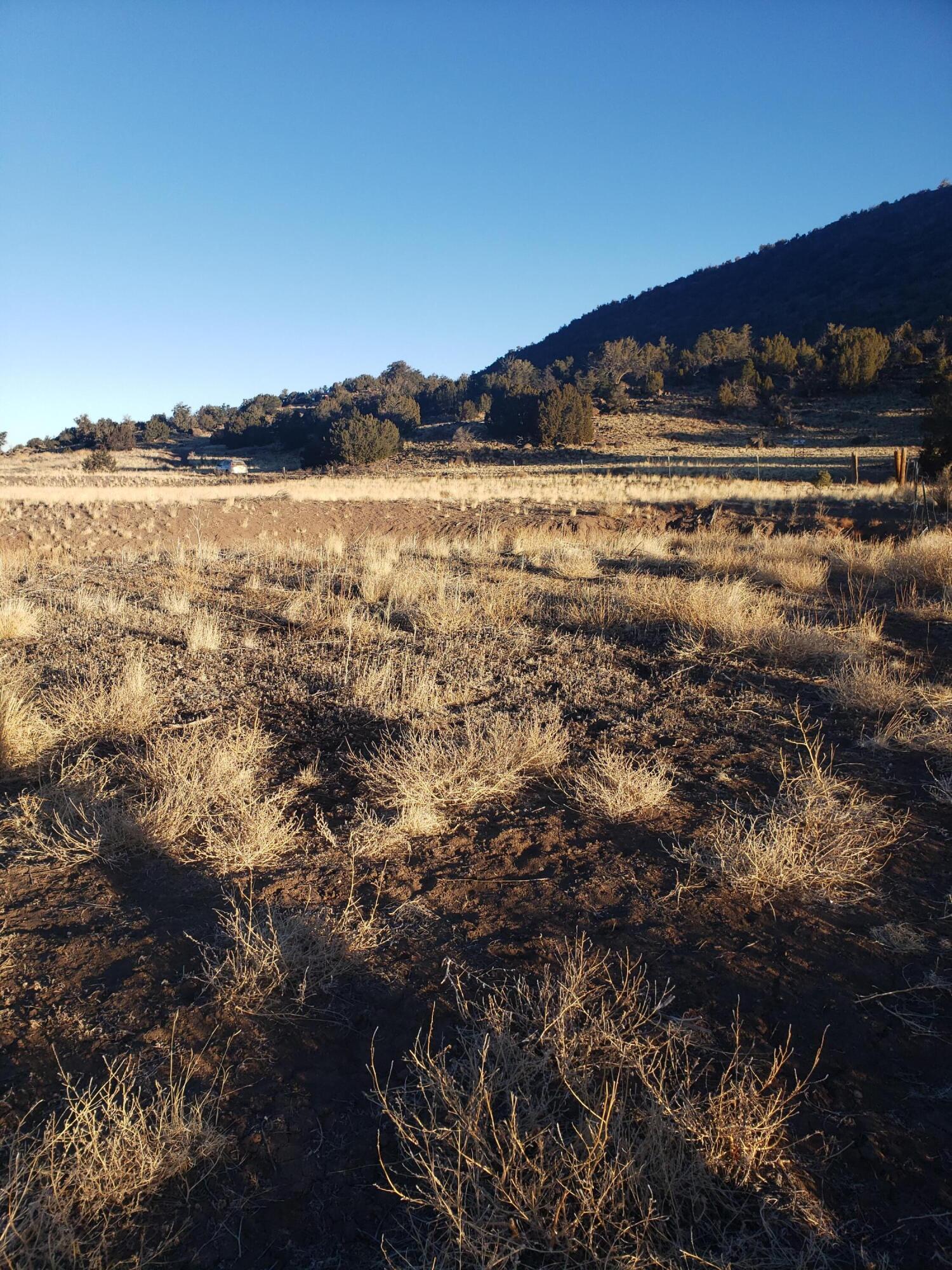 Escudilla Property Photo - Quemado, NM real estate listing
