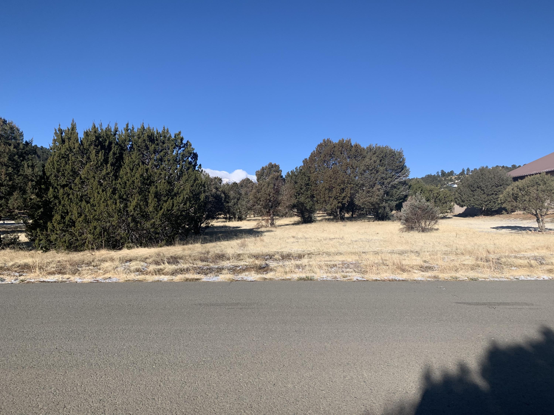 Saddleback Road #8 Property Photo