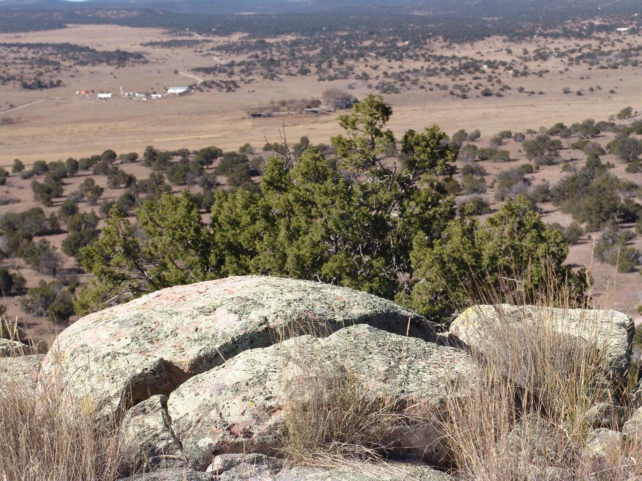 Greens Gap Road Property Photo - Datil, NM real estate listing