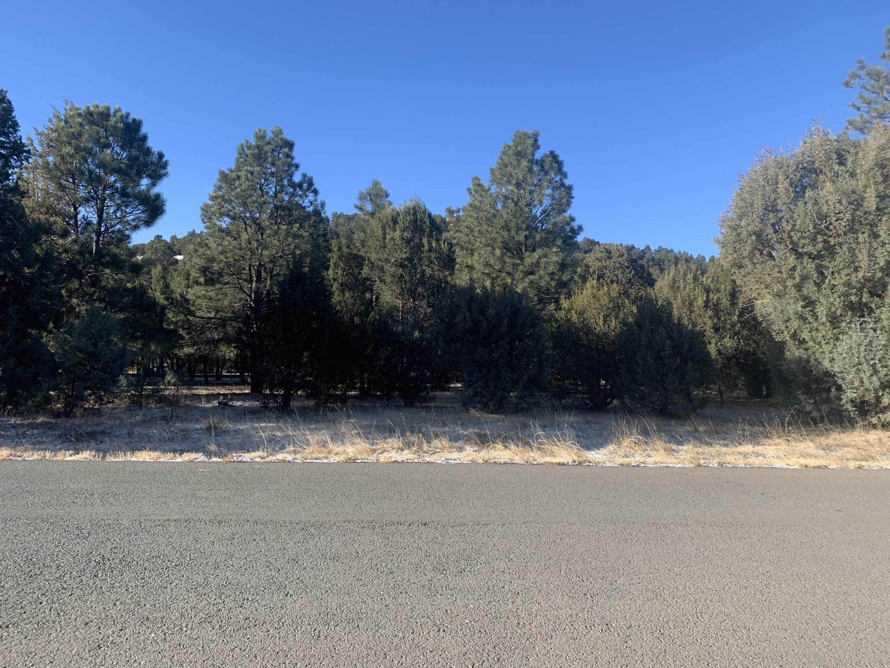 Antler Drive #6 Property Photo - Alto, NM real estate listing