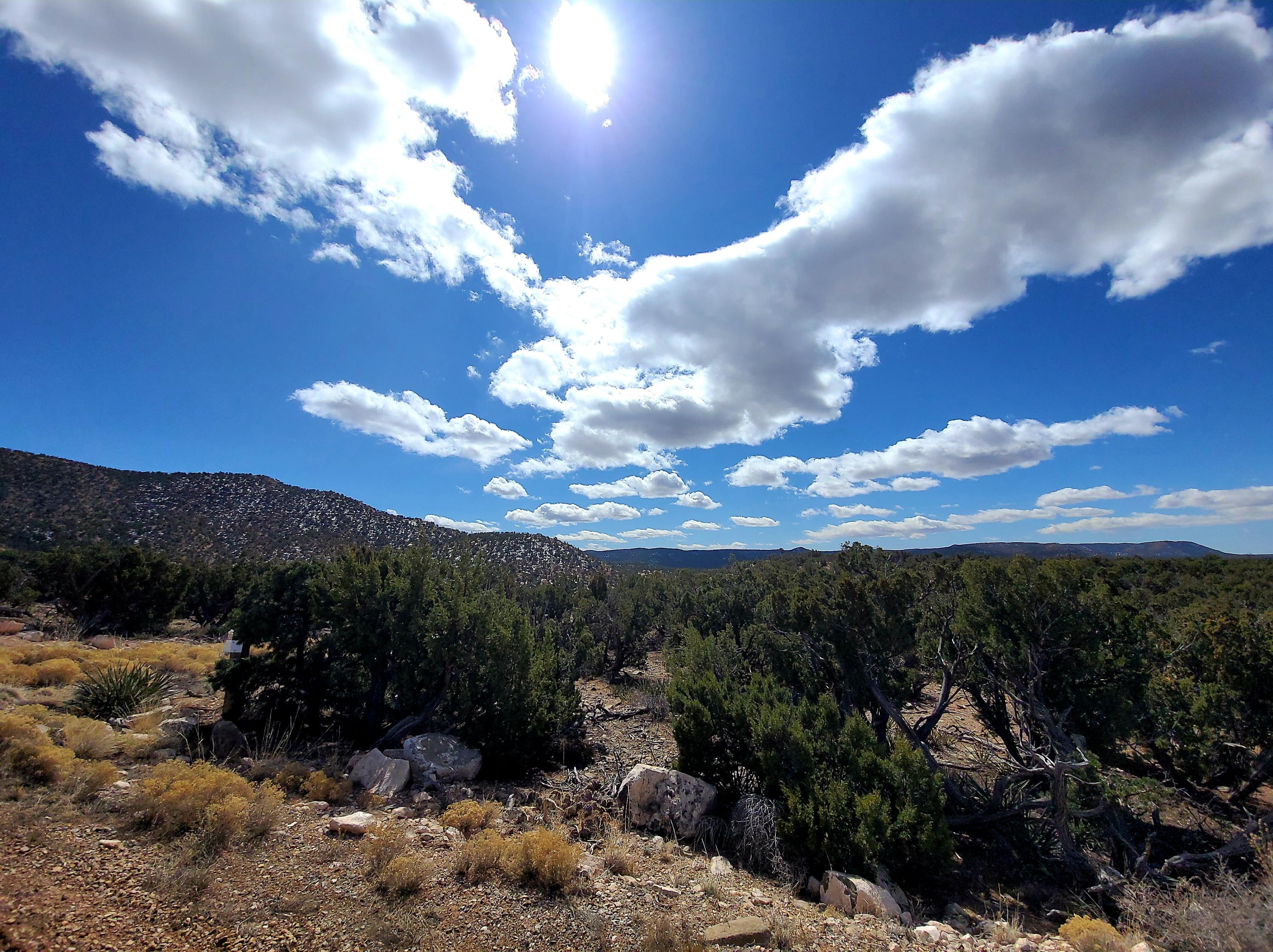39 JUH Trail Property Photo - Mountainair, NM real estate listing
