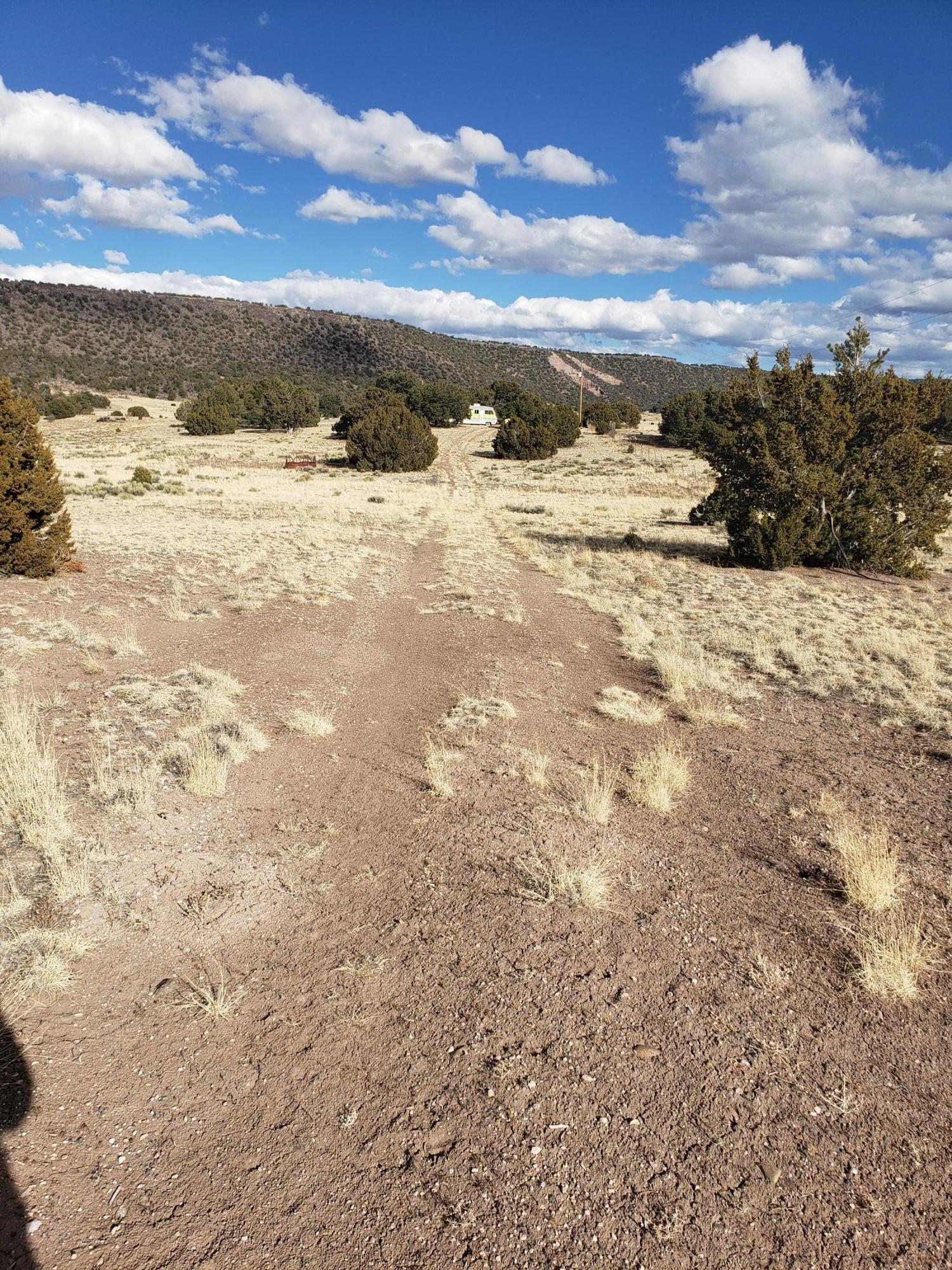 78 Northside Dr Property Photo - Quemado, NM real estate listing