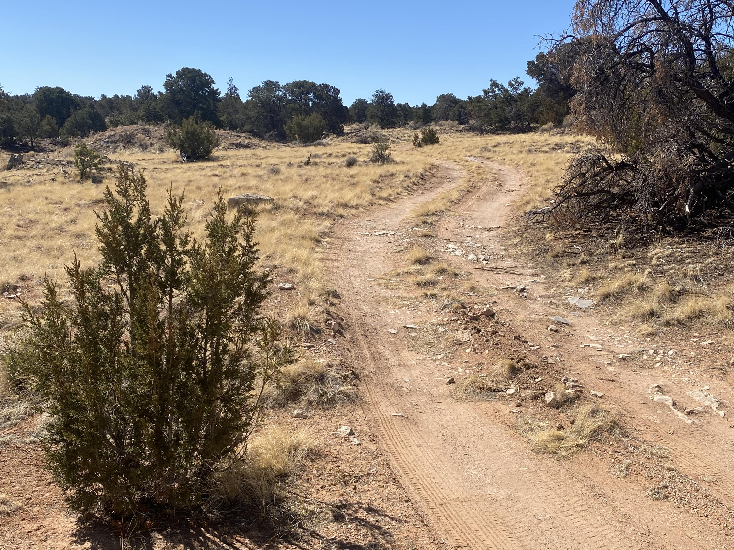 Lot 5 Eagle Rock Ranches Property Photo - Prewitt, NM real estate listing