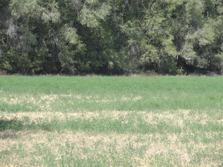 Molina Road Tract A4A Property Photo 1