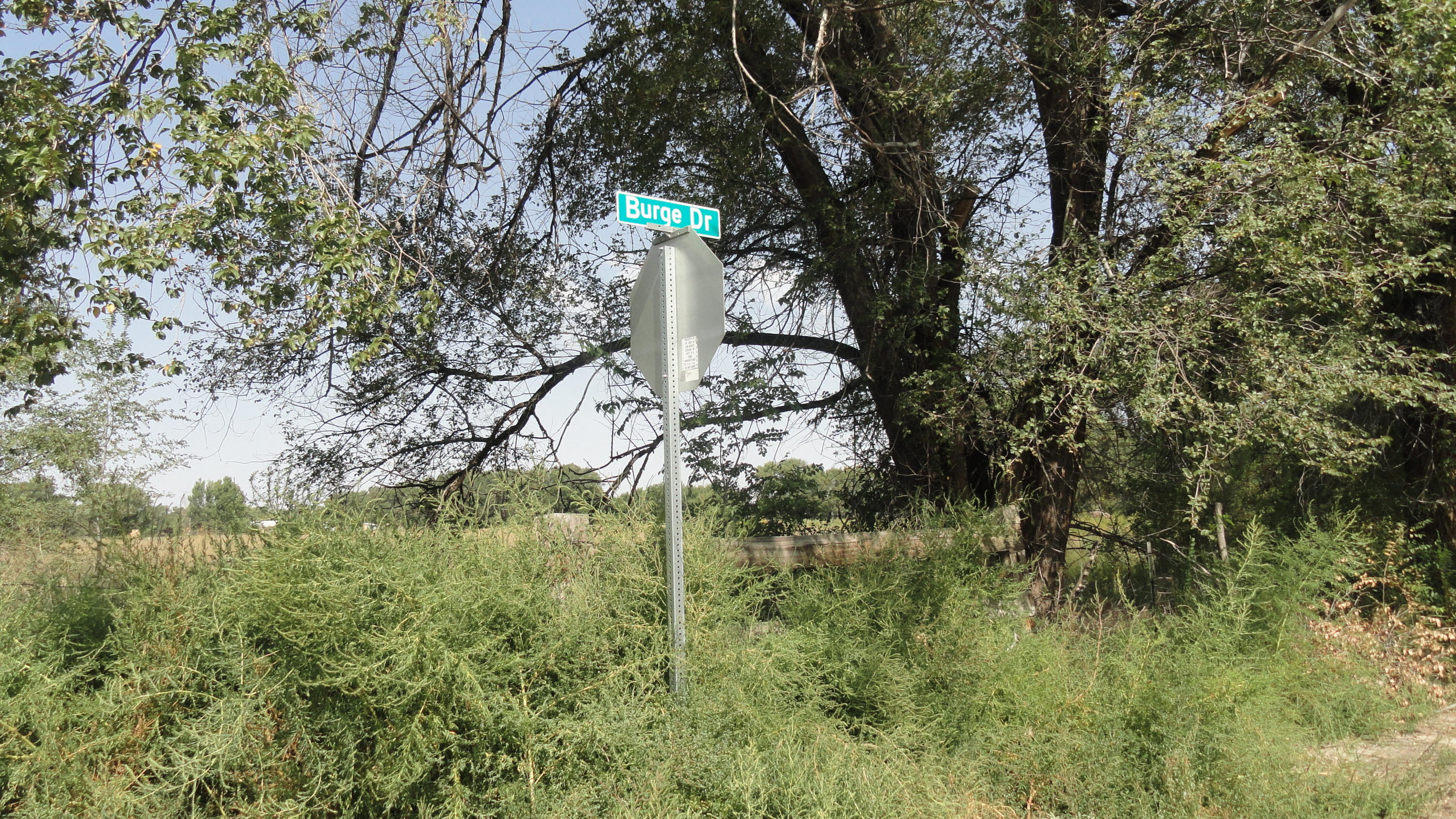 Molina Road Tract 4 Property Photo - Peralta, NM real estate listing