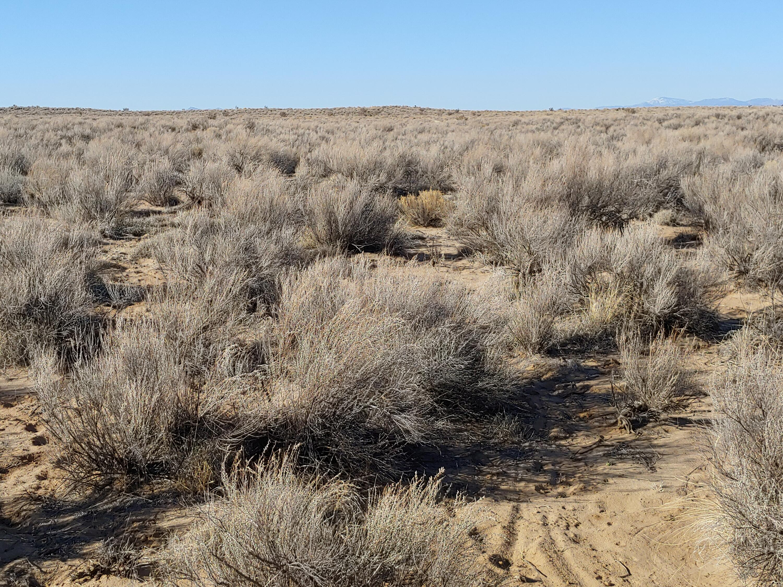 None SE Property Photo - Rio Rancho, NM real estate listing