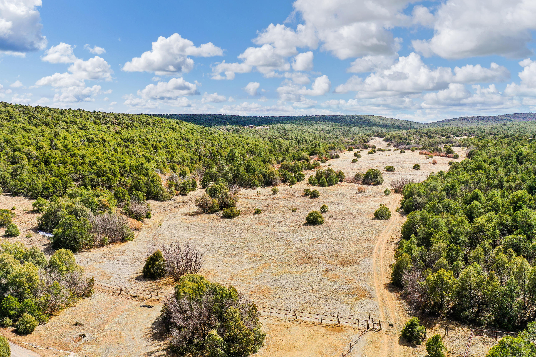 0 Sedillo Canyon Road Property Photo - Tijeras, NM real estate listing
