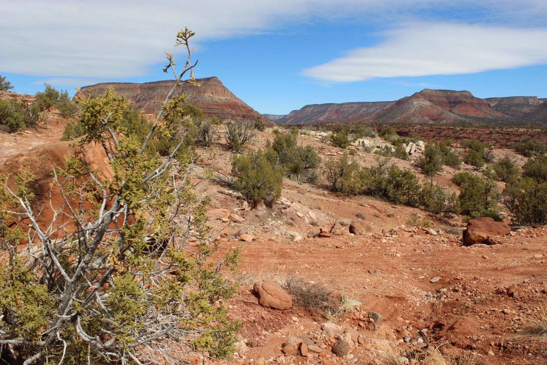 Highway 485 Property Photo - Jemez Pueblo, NM real estate listing