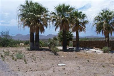 0 Organ Property Photo - Elephant Butte, NM real estate listing