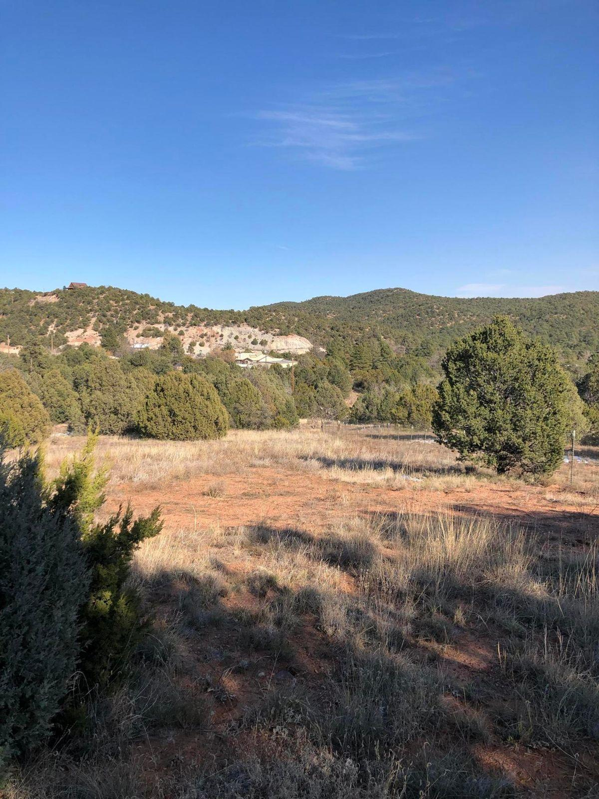 3 CANONCITO Road Property Photo - Cedar Crest, NM real estate listing
