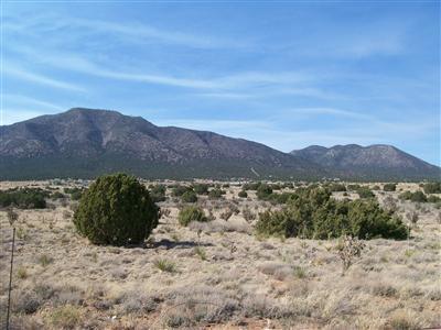 0 Entranosa Road #Entranosa & Horton Property Photo - Edgewood, NM real estate listing