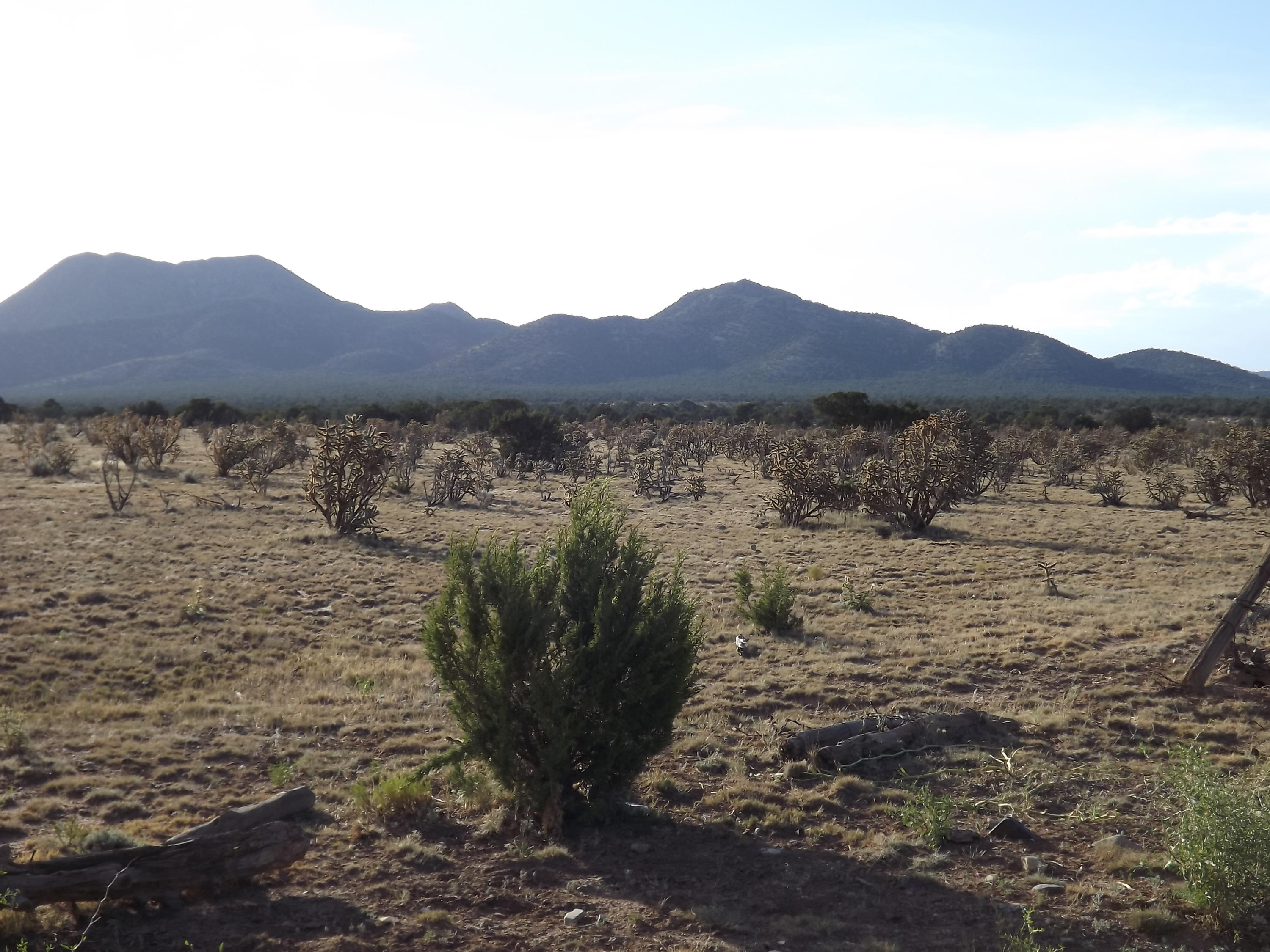 1170 STATE ROAD 344 Property Photo - Stanley, NM real estate listing