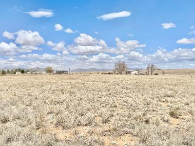 30 ROACH Road Property Photo - Stanley, NM real estate listing