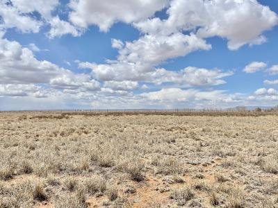 40 ROACH Road Property Photo - Stanley, NM real estate listing