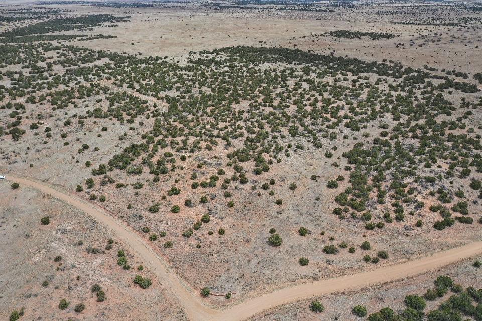 195 Keres Trail Property Photo - Mountainair, NM real estate listing