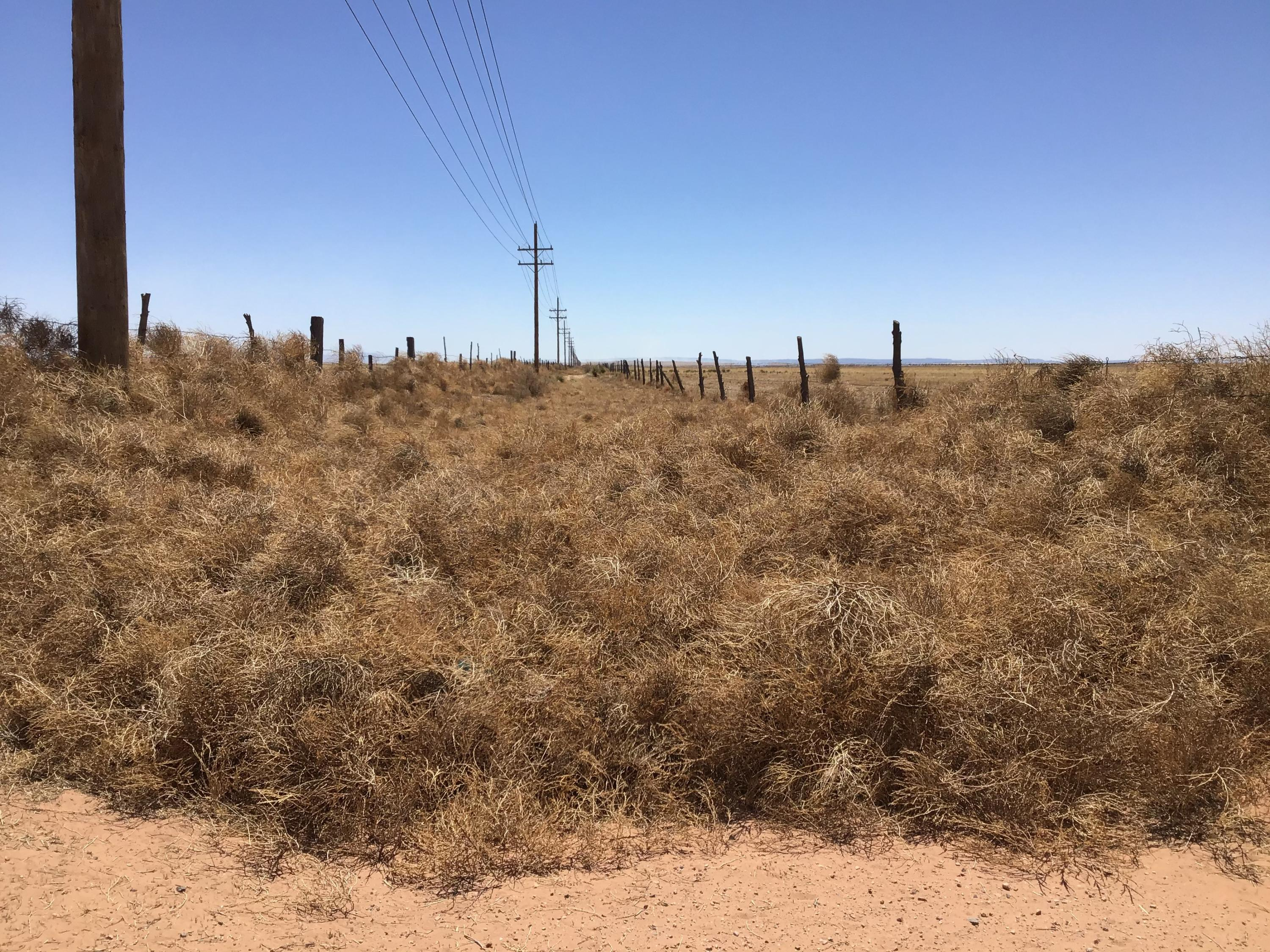 Vacant Land Property Photo - McIntosh, NM real estate listing