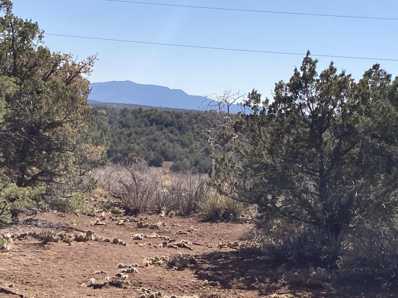 29 Roadrunner Court Property Photo - Estancia, NM real estate listing