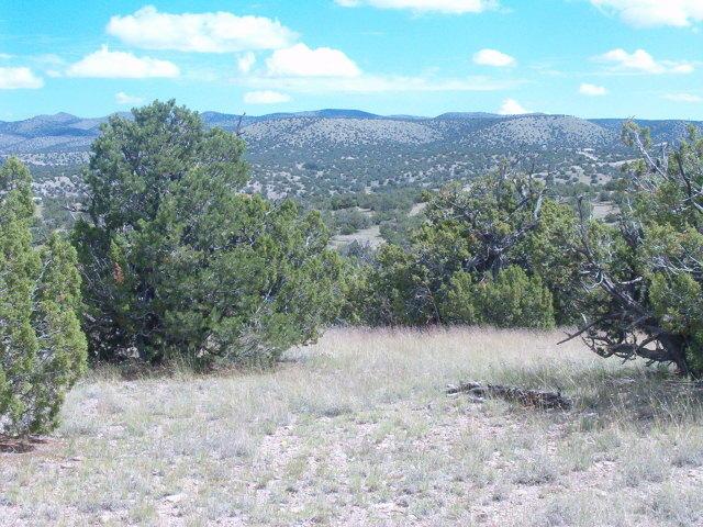 49 Camino Del Sueno Property Photo