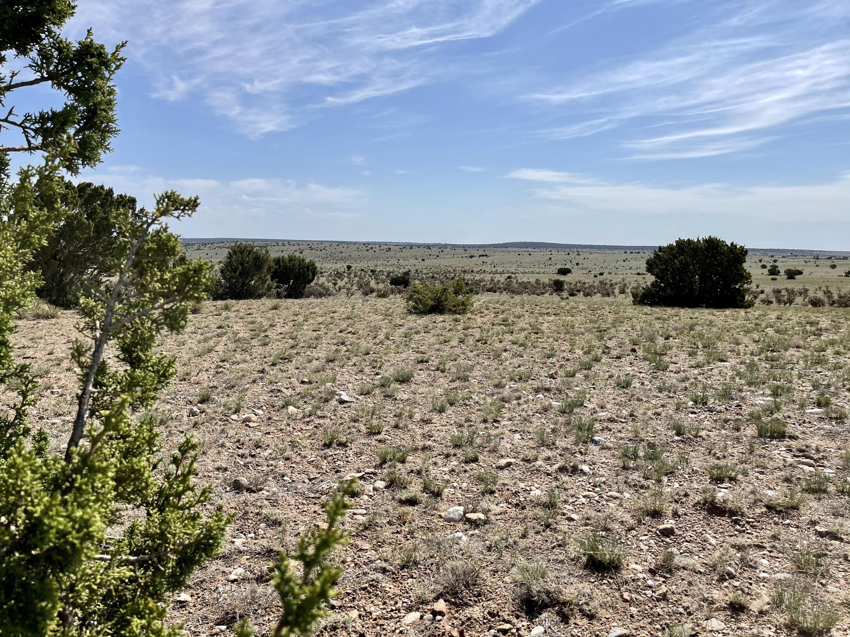 0 Glorieta View Road Property Photo - Santa Rosa, NM real estate listing