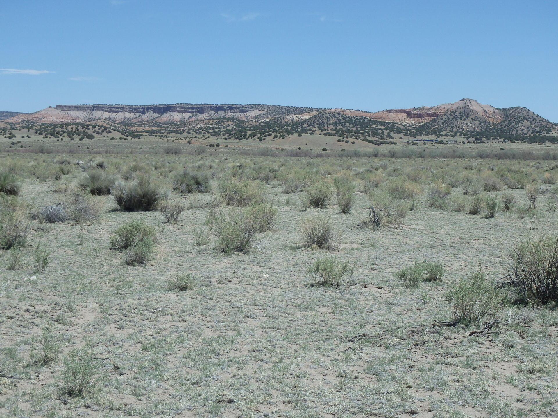 51.81 Acres Property Photo