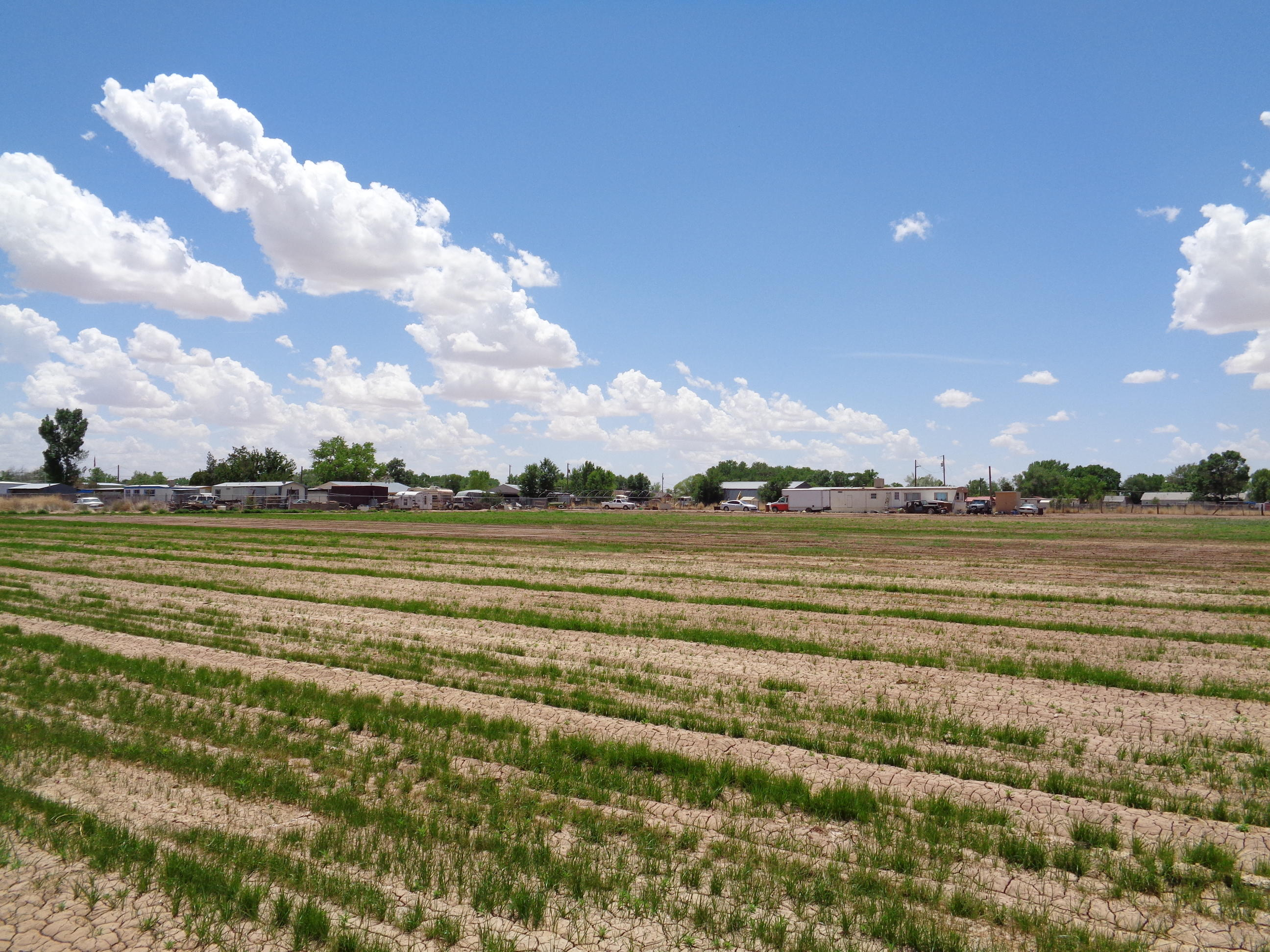 1055 Lucinda Road Property Photo