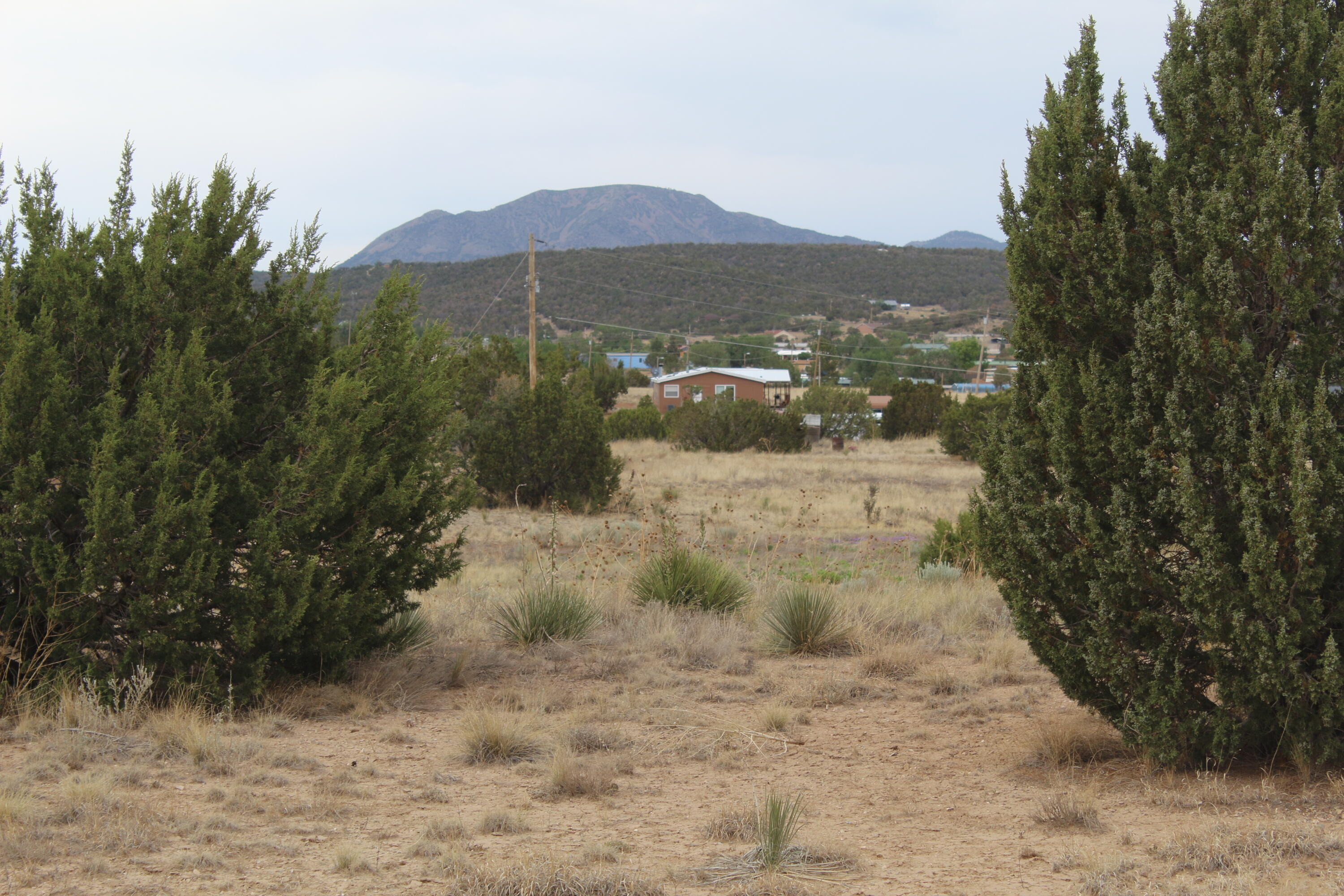 Lands Of The Estate Of Pearl Real Estate Listings Main Image
