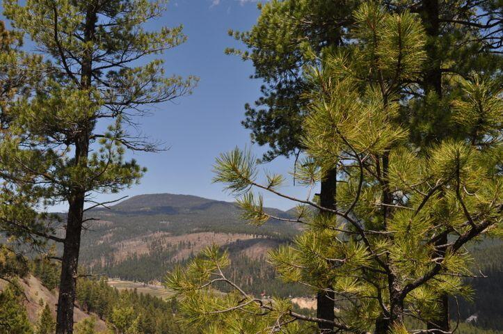 S2 Cielo Vista Property Photo