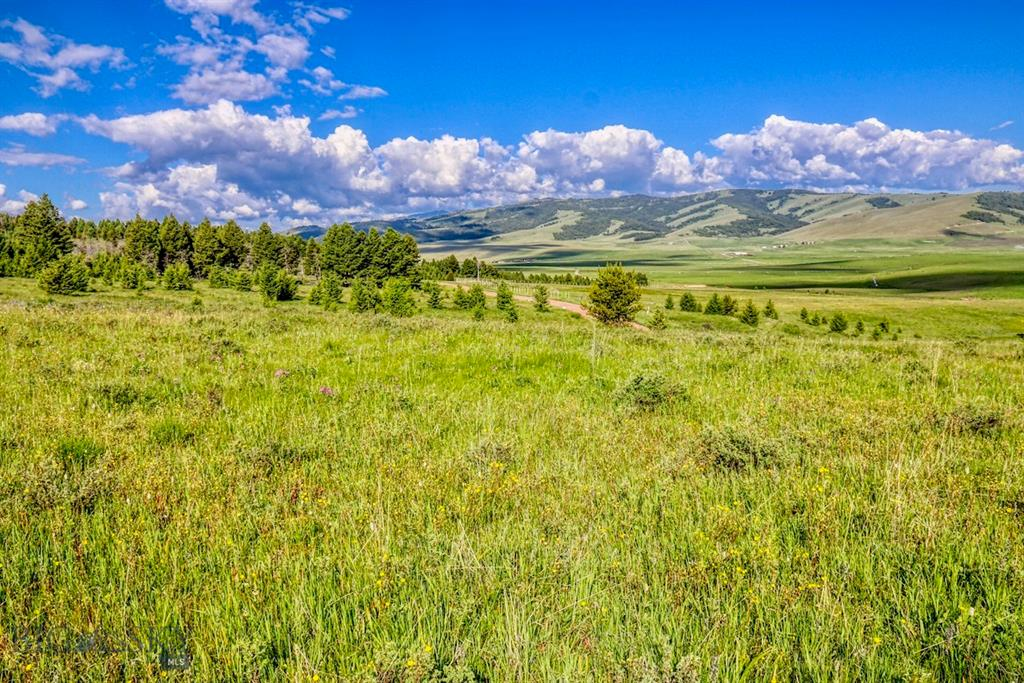 Lot 15 Meadowview Lane Property Photo - Philipsburg, MT real estate listing