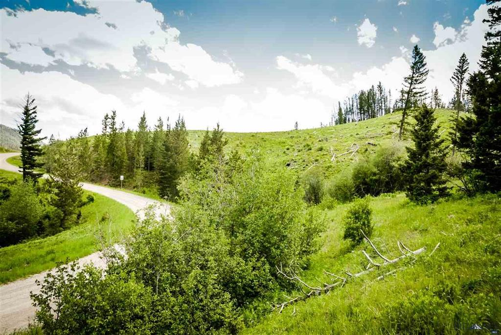 Tract 5 Tiaga Trail Property Photo - Bozeman, MT real estate listing