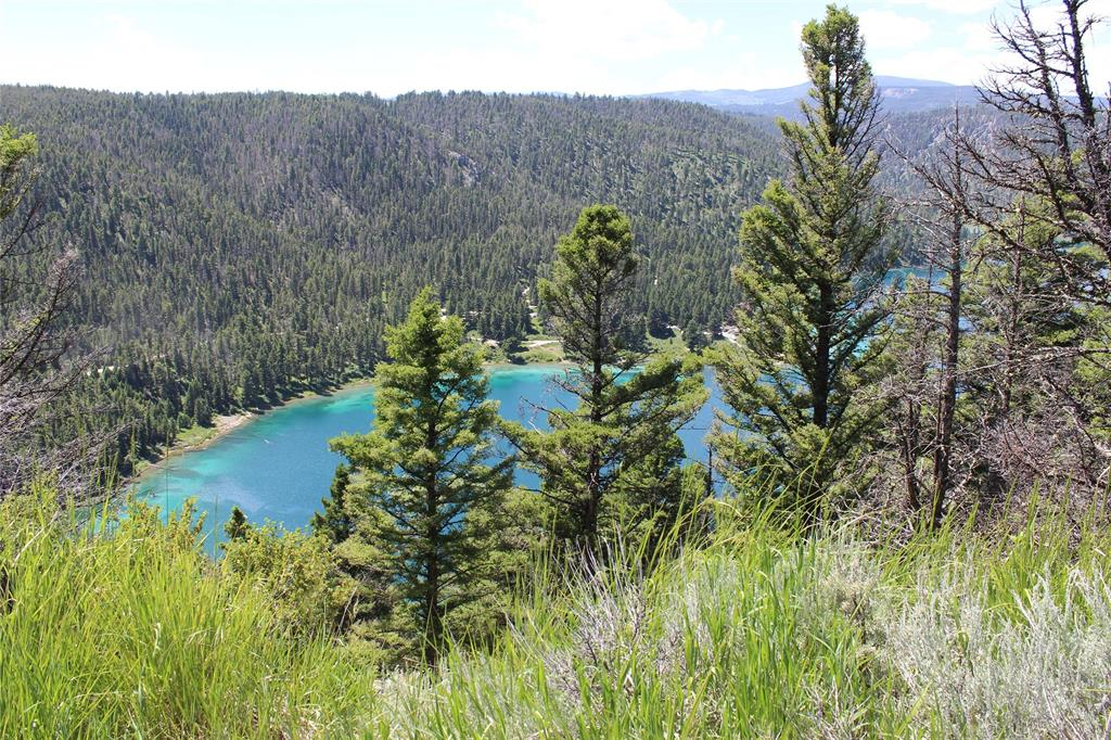 Lot 27 Madison River Ranches Property Photo