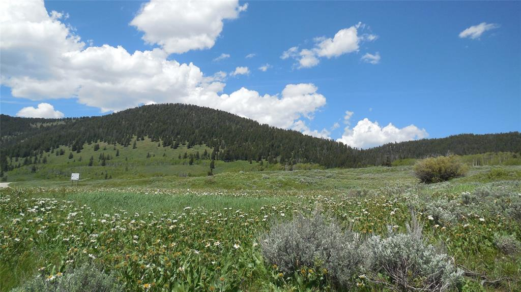 Lot 5 Fishing Lane, West Yellowstone, MT 59758 - West Yellowstone, MT real estate listing