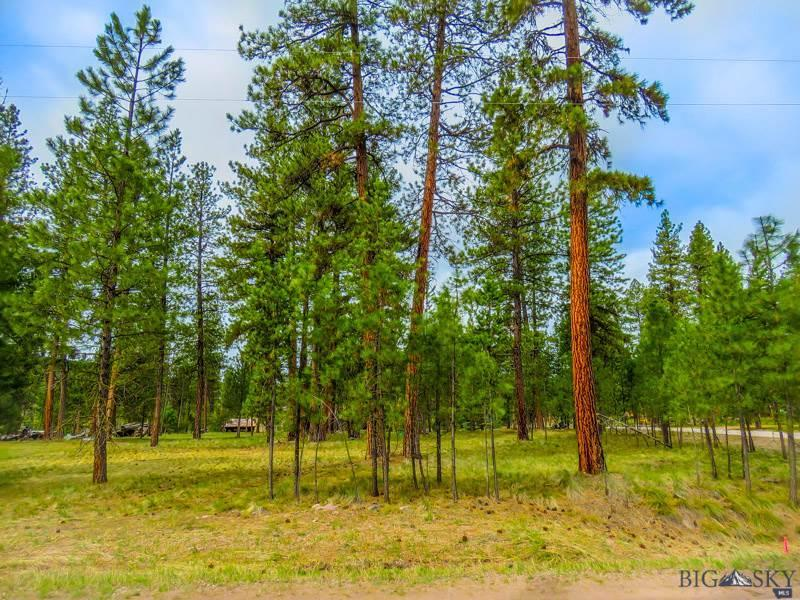 Lot 106 Cougar Court, Seeley Lake, MT 59868 - Seeley Lake, MT real estate listing