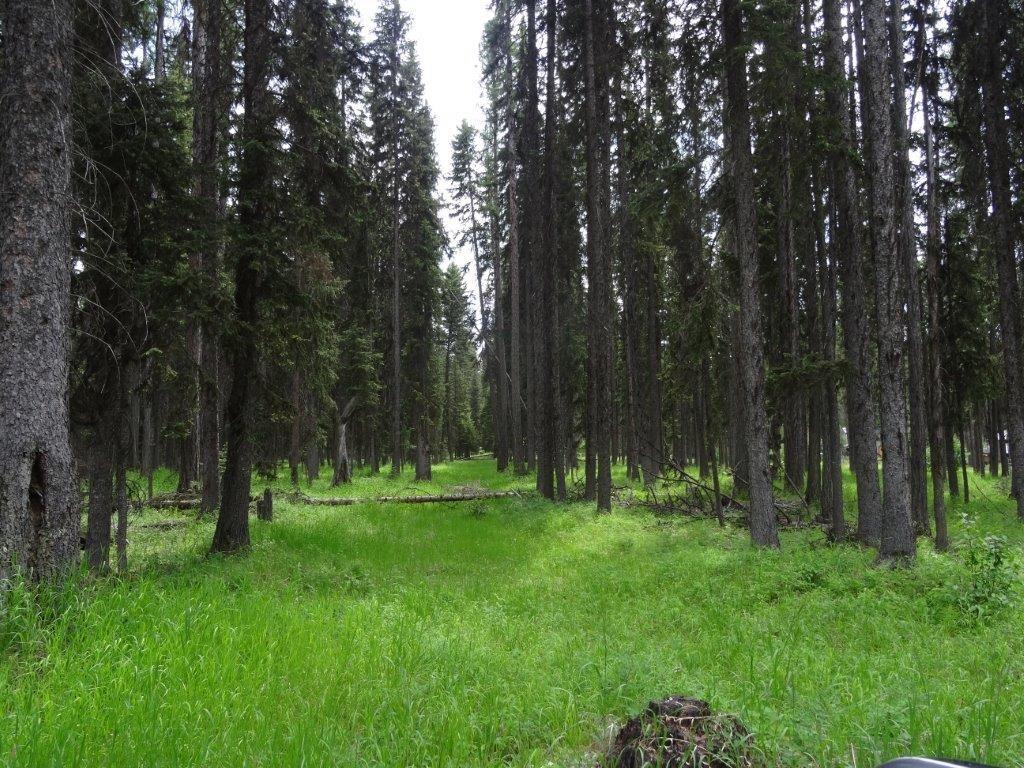B1 Enchanted Forest Road, Seeley Lake, MT 59868 - Seeley Lake, MT real estate listing