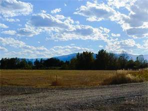 TBD Buttercup Drive, Roberts, MT 59070 - Roberts, MT real estate listing